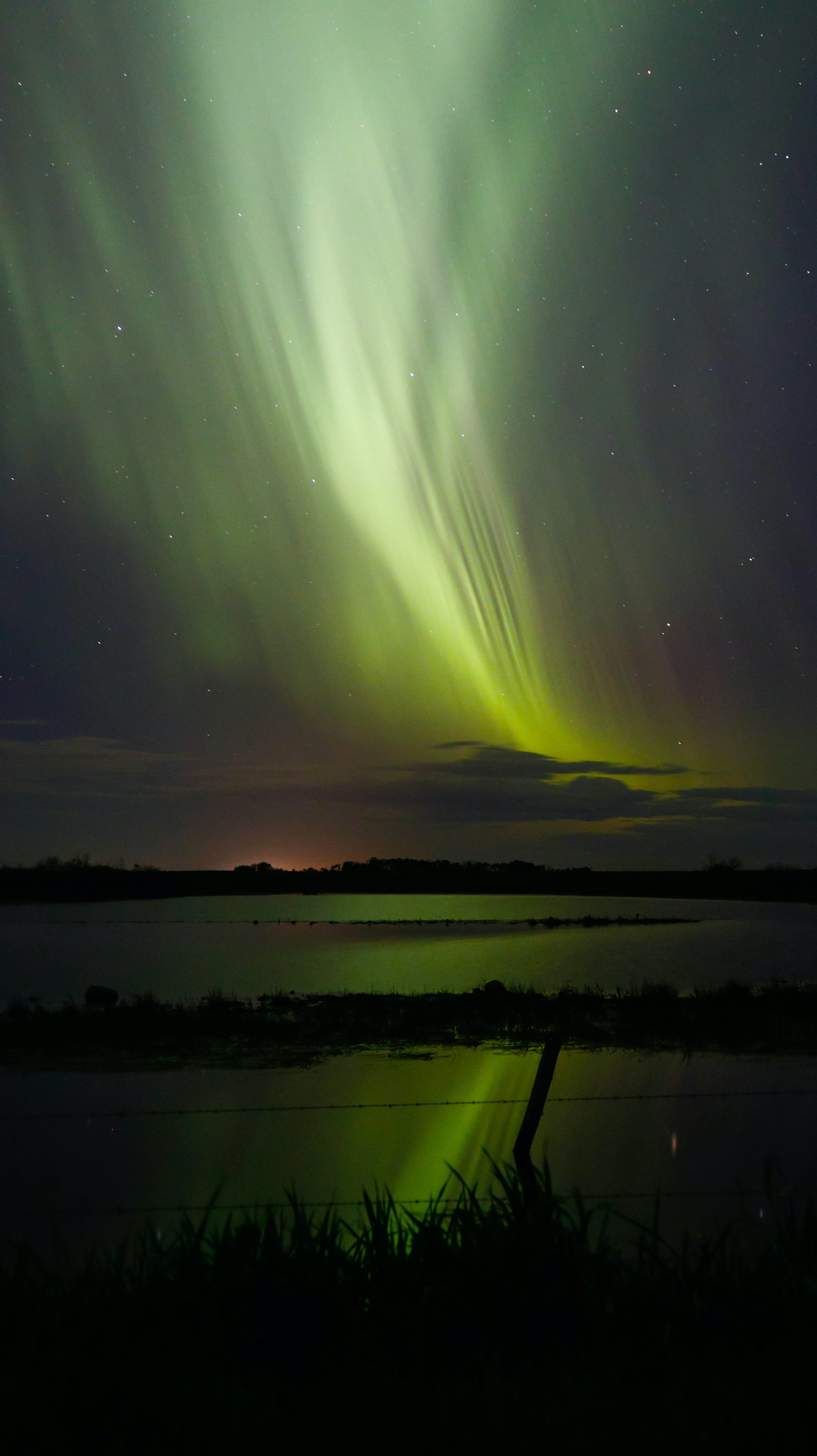 Beautiful green northern lights in the night sky above a wire fence