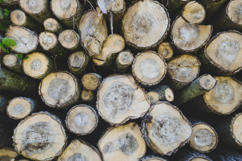 stack of wood log