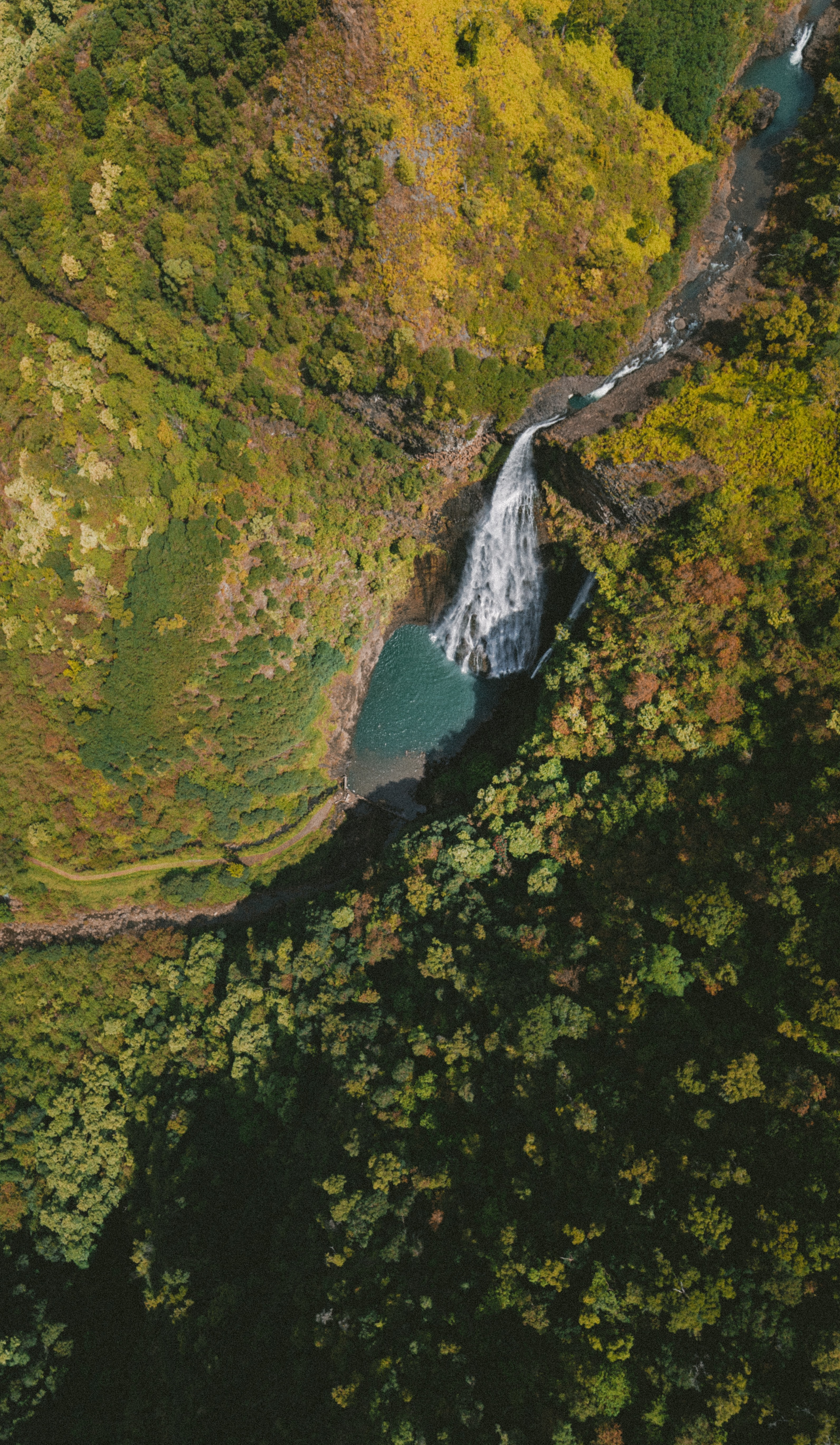 Drone view of a waterfall and river in between mountains and forest