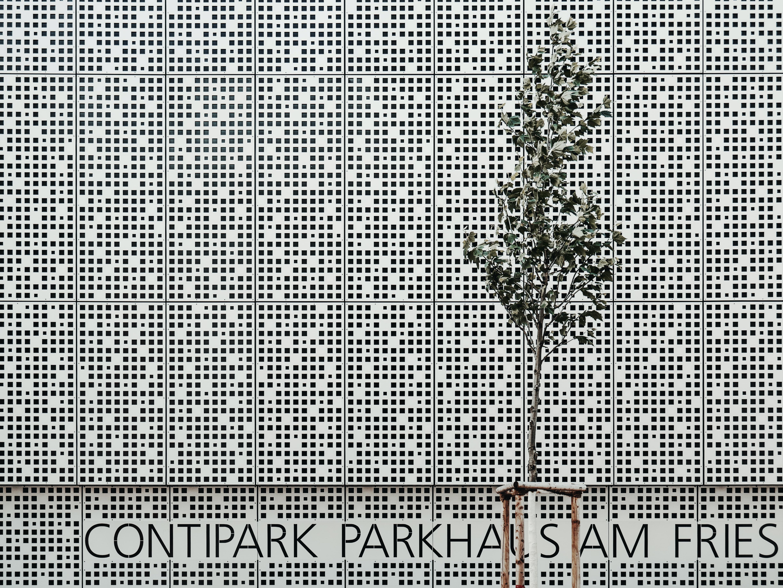 Contipark Parkhan Sam fries