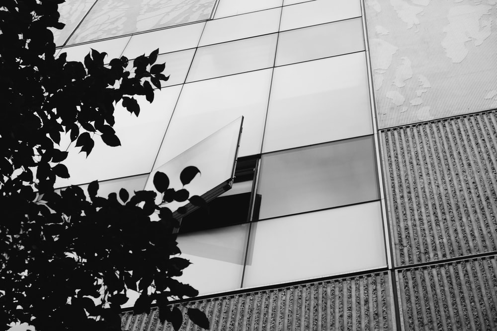 grayscale photography o building