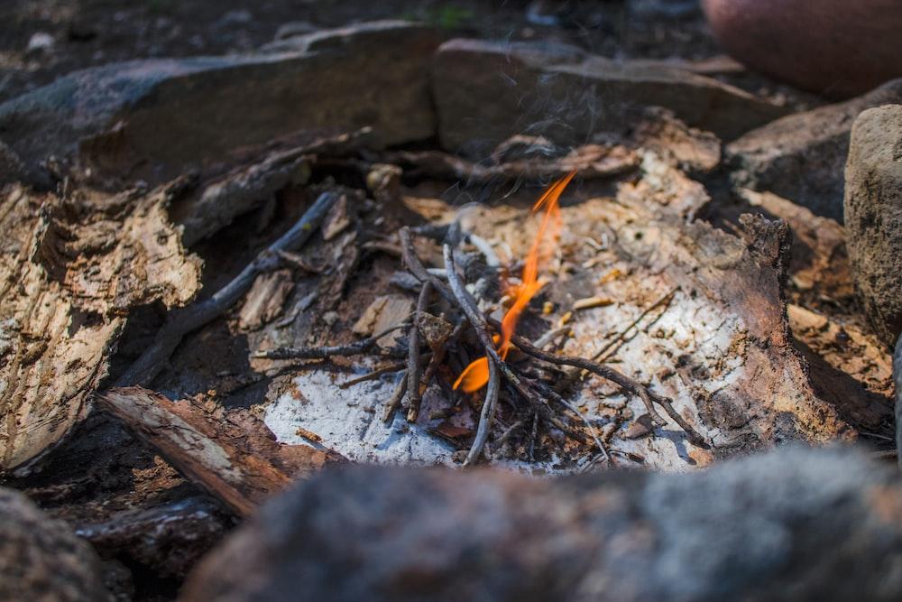 tilt shift photography of bonfire