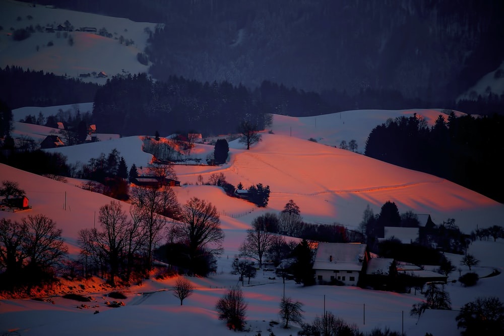 snow covered town during sunset