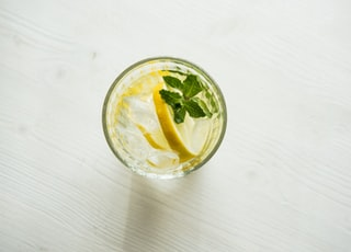 filled clear drinking glass with sliced citrus and green leaf vegetable