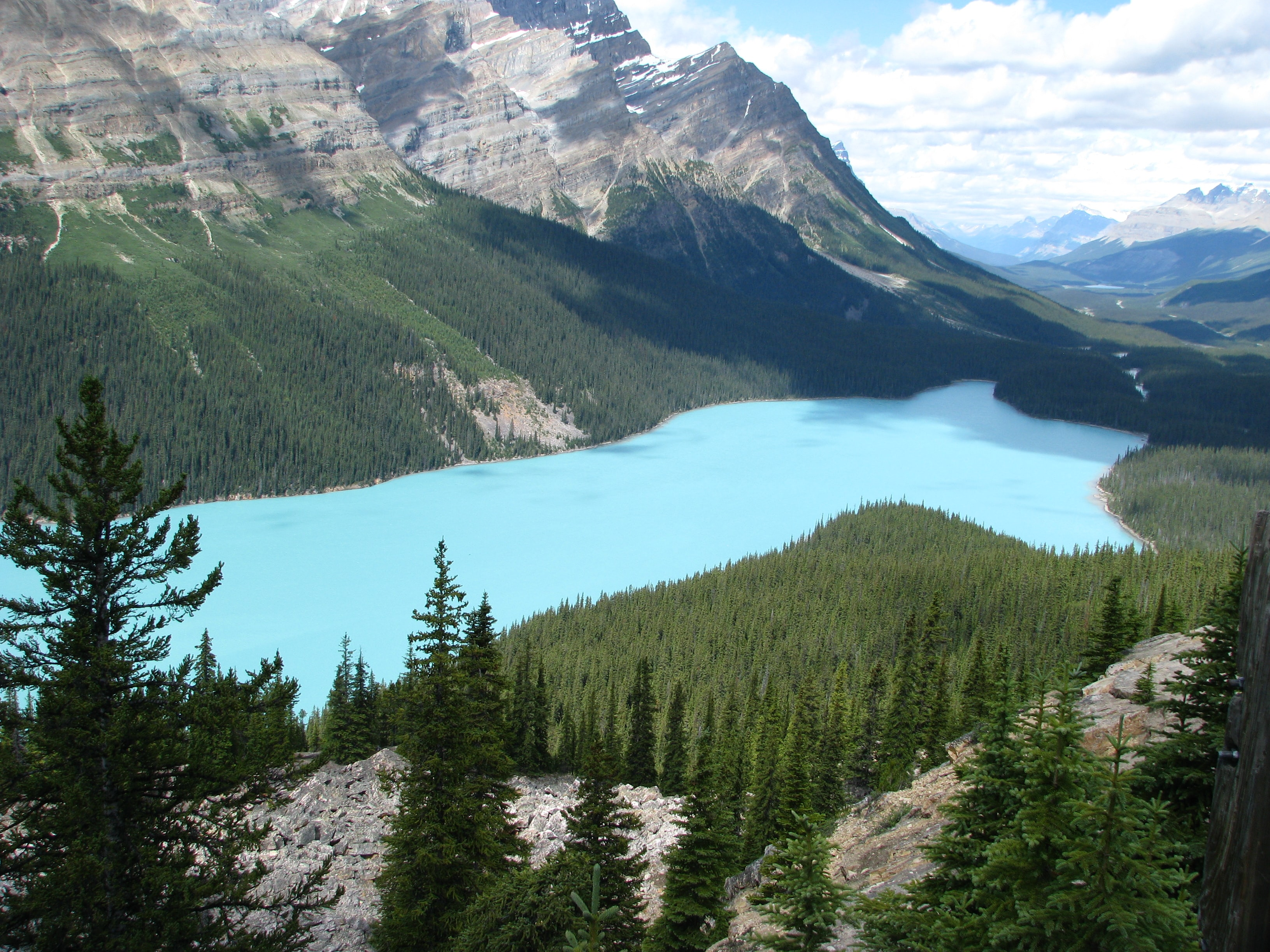 The light blue Peyto Lake in the mountains on a bright day