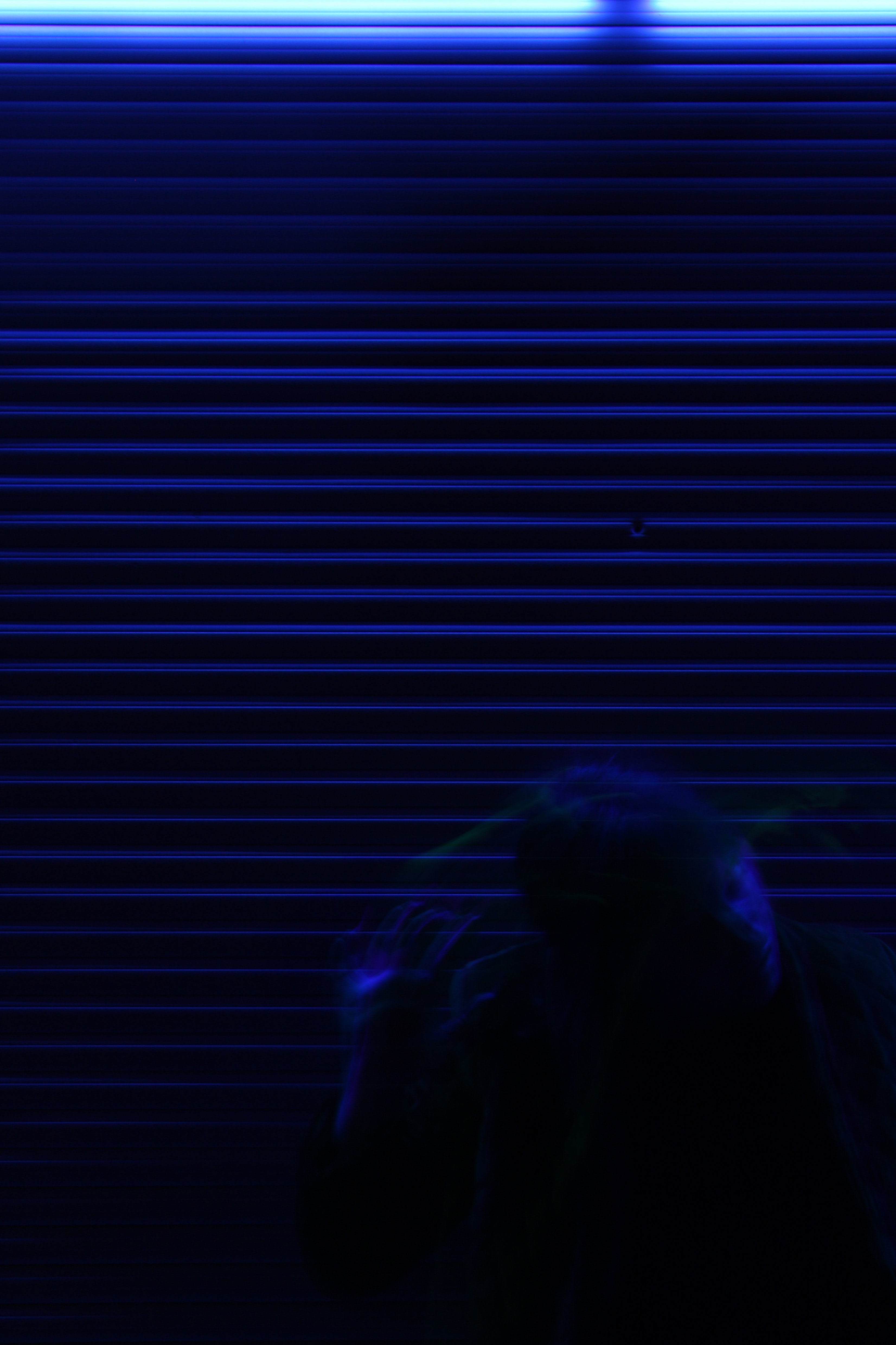 A creepy picture of a person standing near a closed blue garage door.