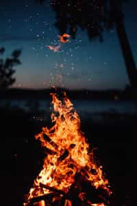 Sappy Fire   Whirling, airy smoke-immanence. A sad, sad song is tuned for me. Grey char, blending orange shine, eminence. Now that this Old World is ending....  Markie Waters poems stories