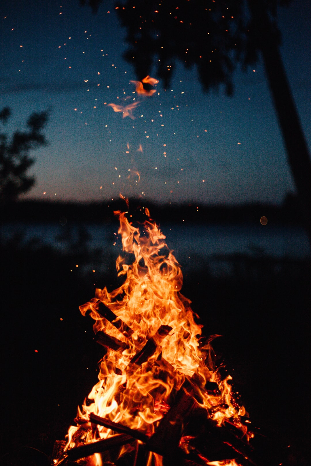 500 Best Campfire Pictures Hd Download Free Images On
