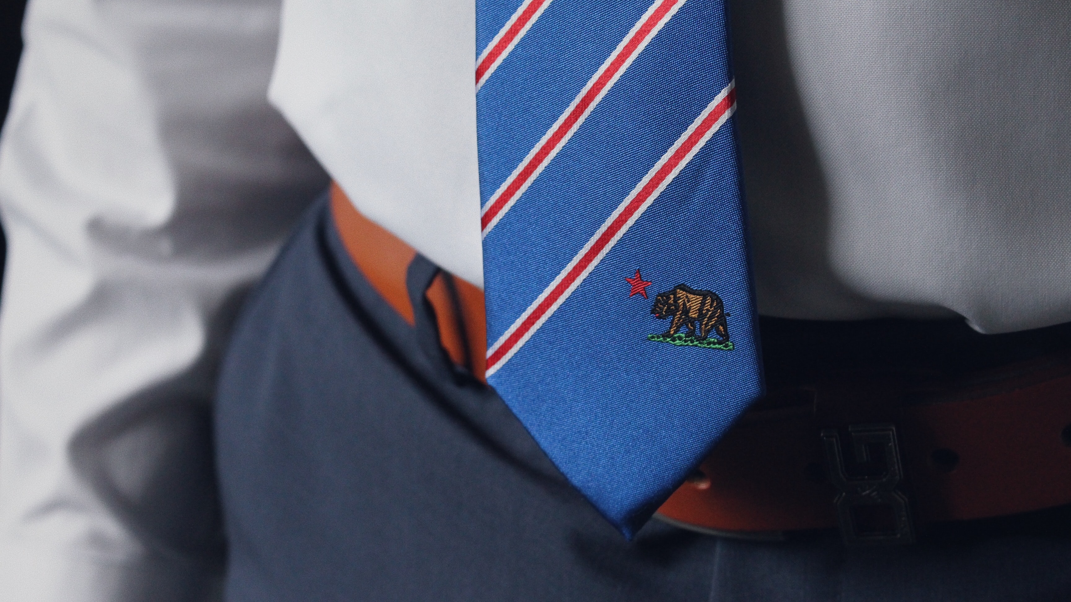 person wearing blue and red necktie
