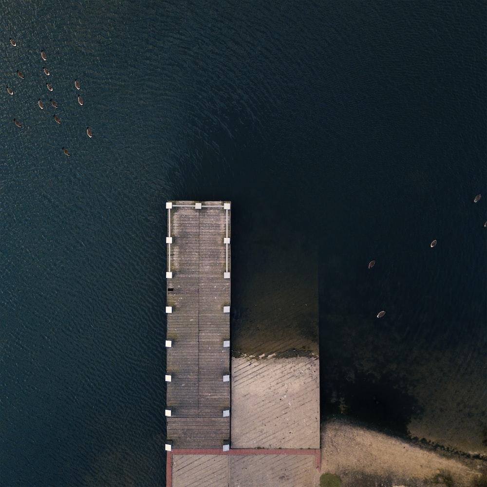 wooden dock near shore