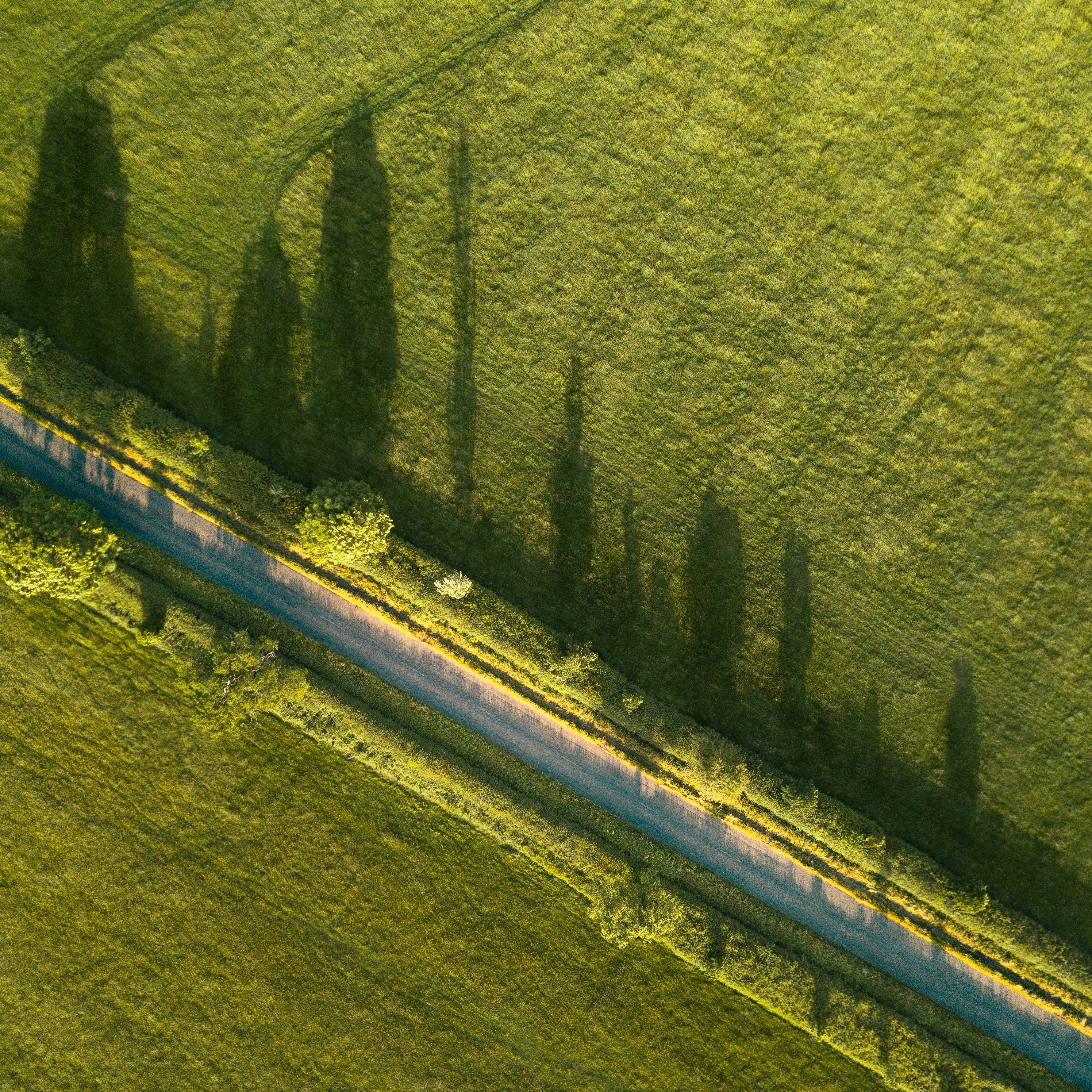 A drone shot of a rural road lined with hedges