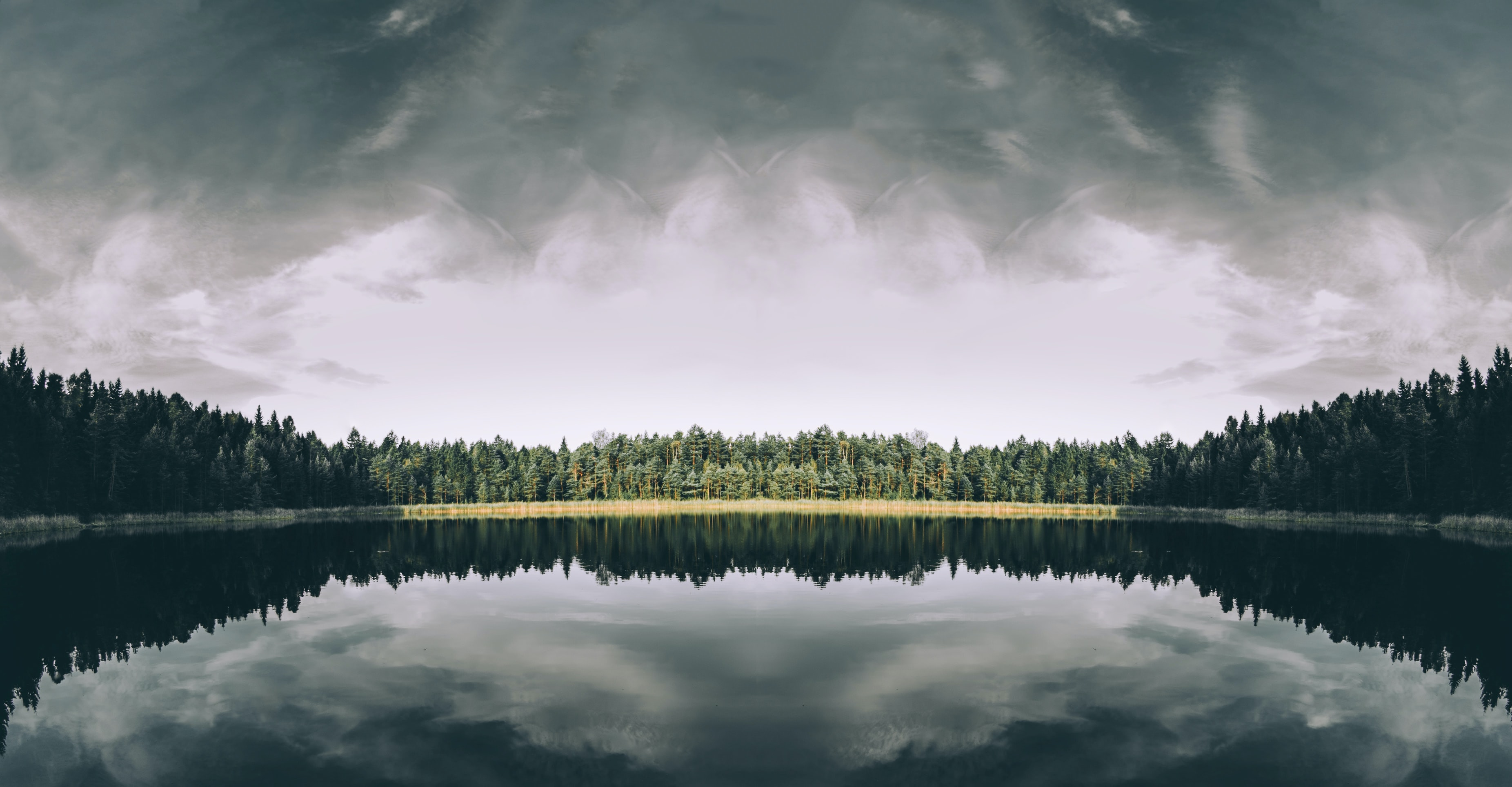 A still lake surrounded by coniferous trees in Estonia on a cloudy day