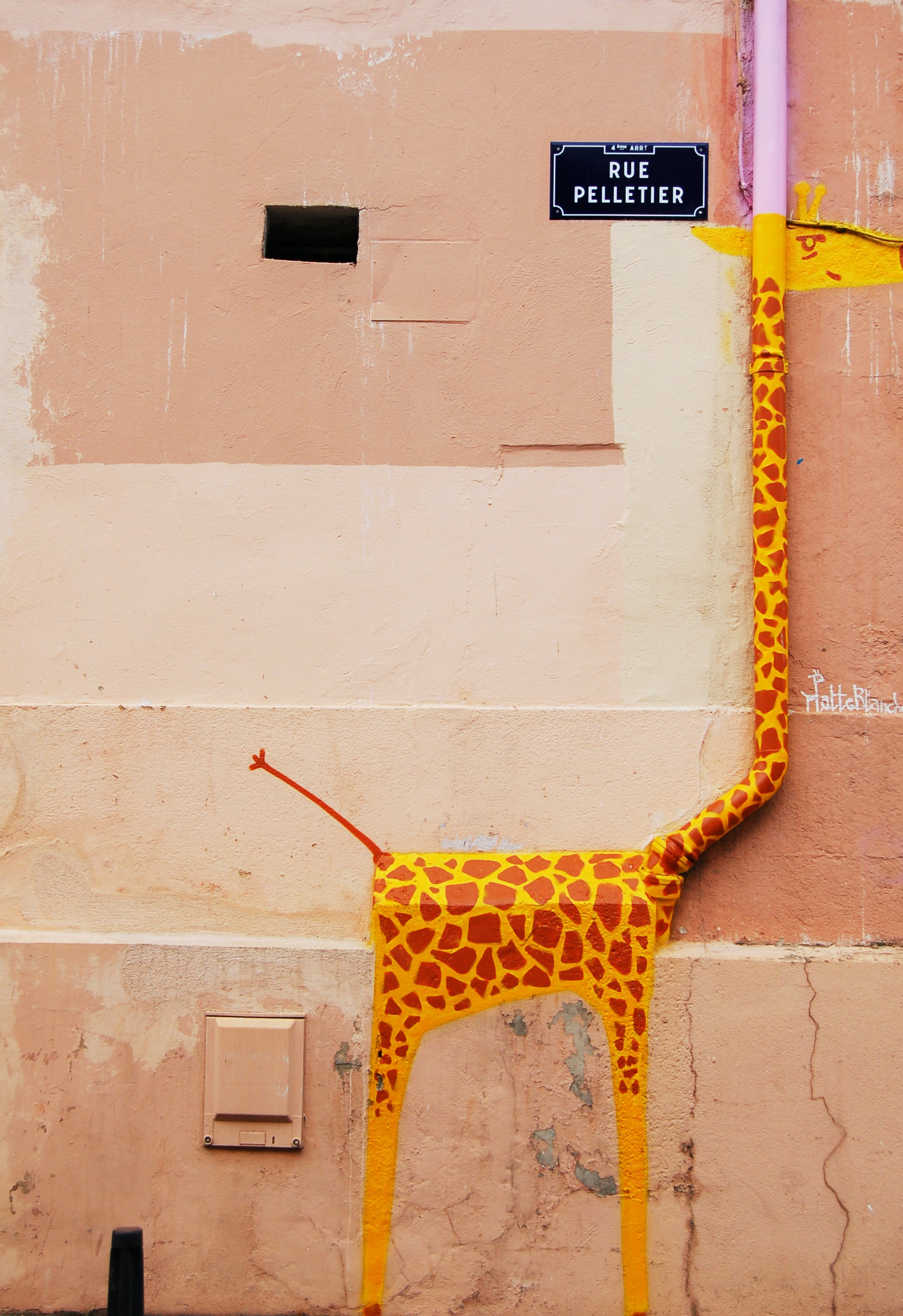 Giraffe graffiti artwork painted on drainpipe with street sign, Wall street art in a public place