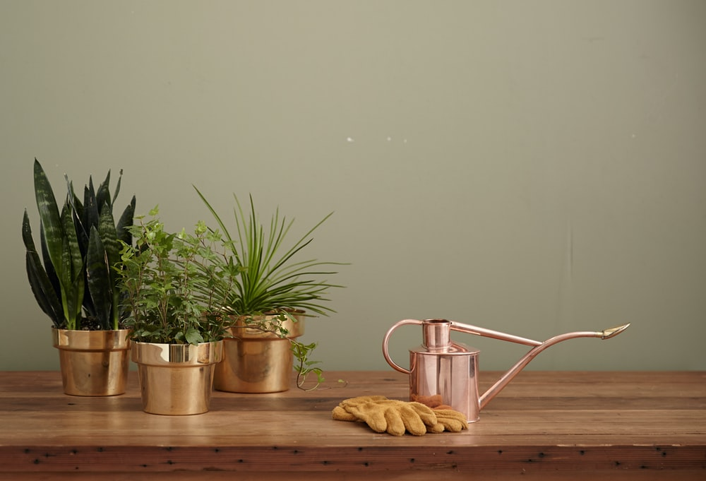 brass-colored garden water can on brown table