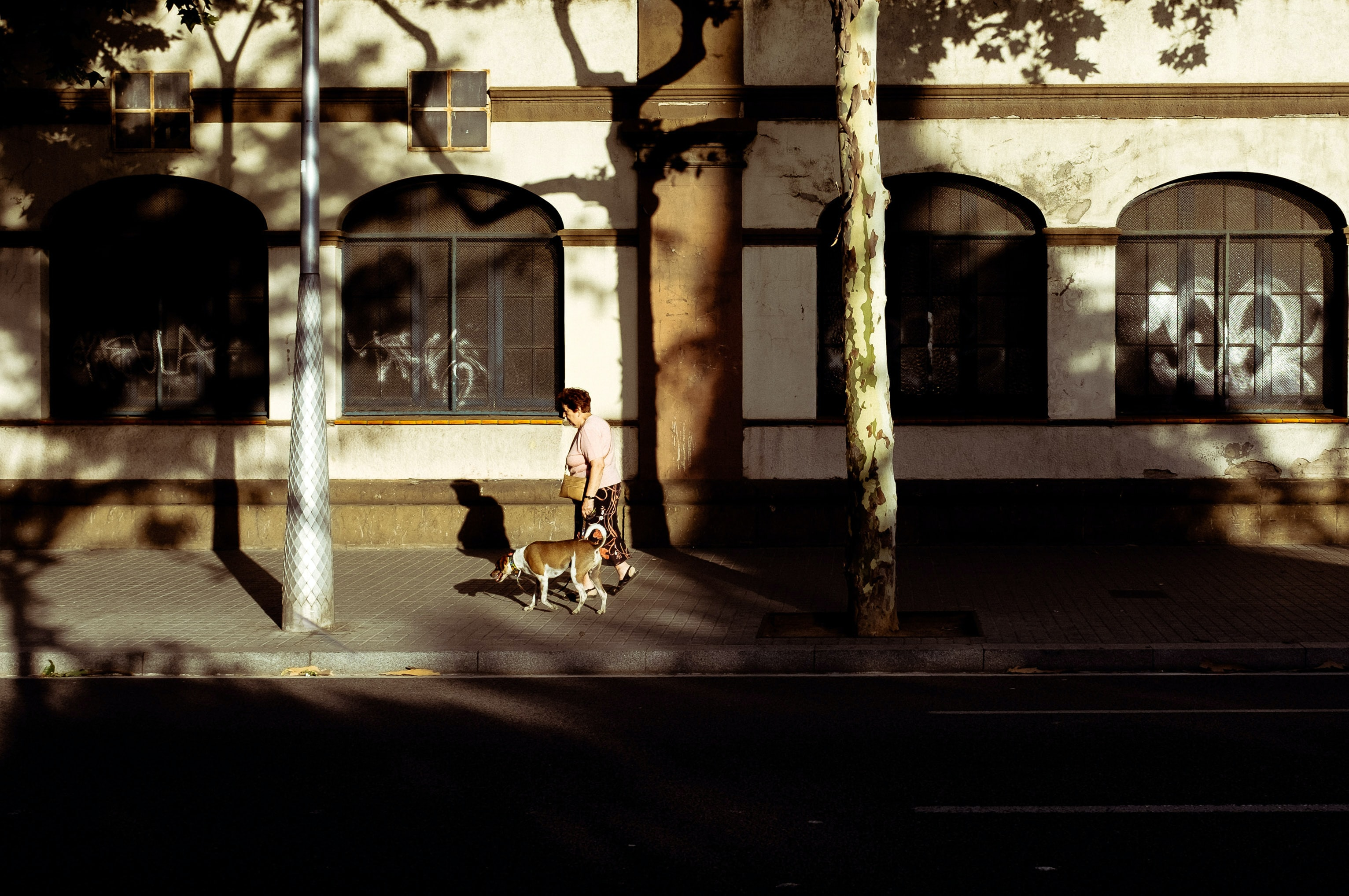 A woman walking her dog on an empty sidewalk in a city