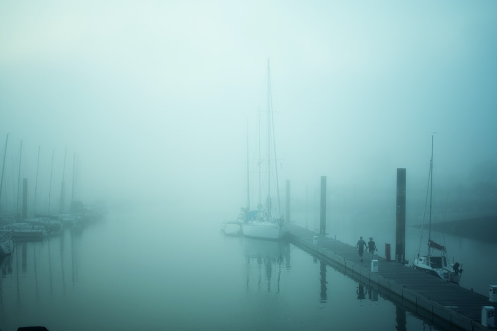 two person waling along brown wooden boat dock cover by mist