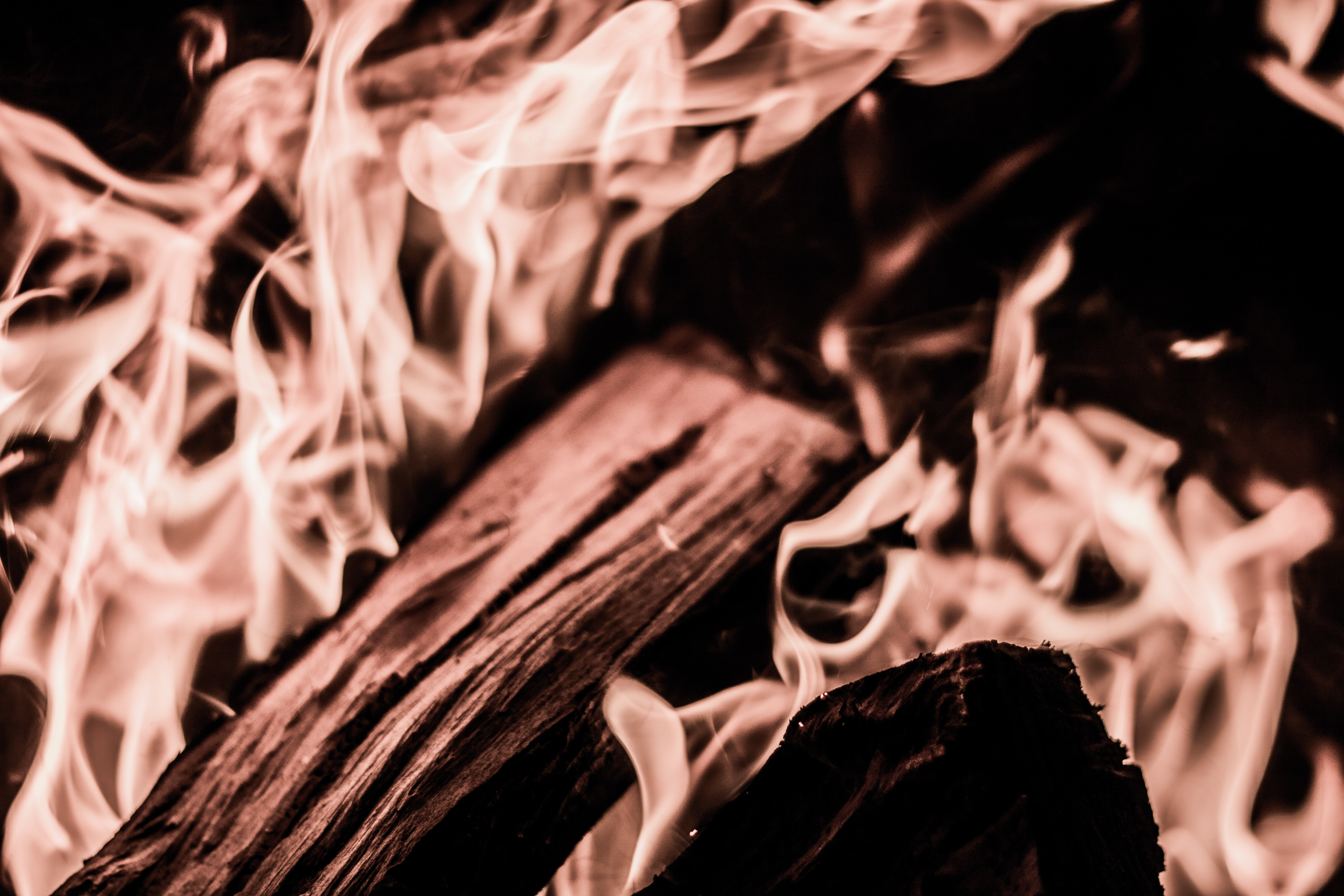Close-up of firewood burning bright in a bonfire