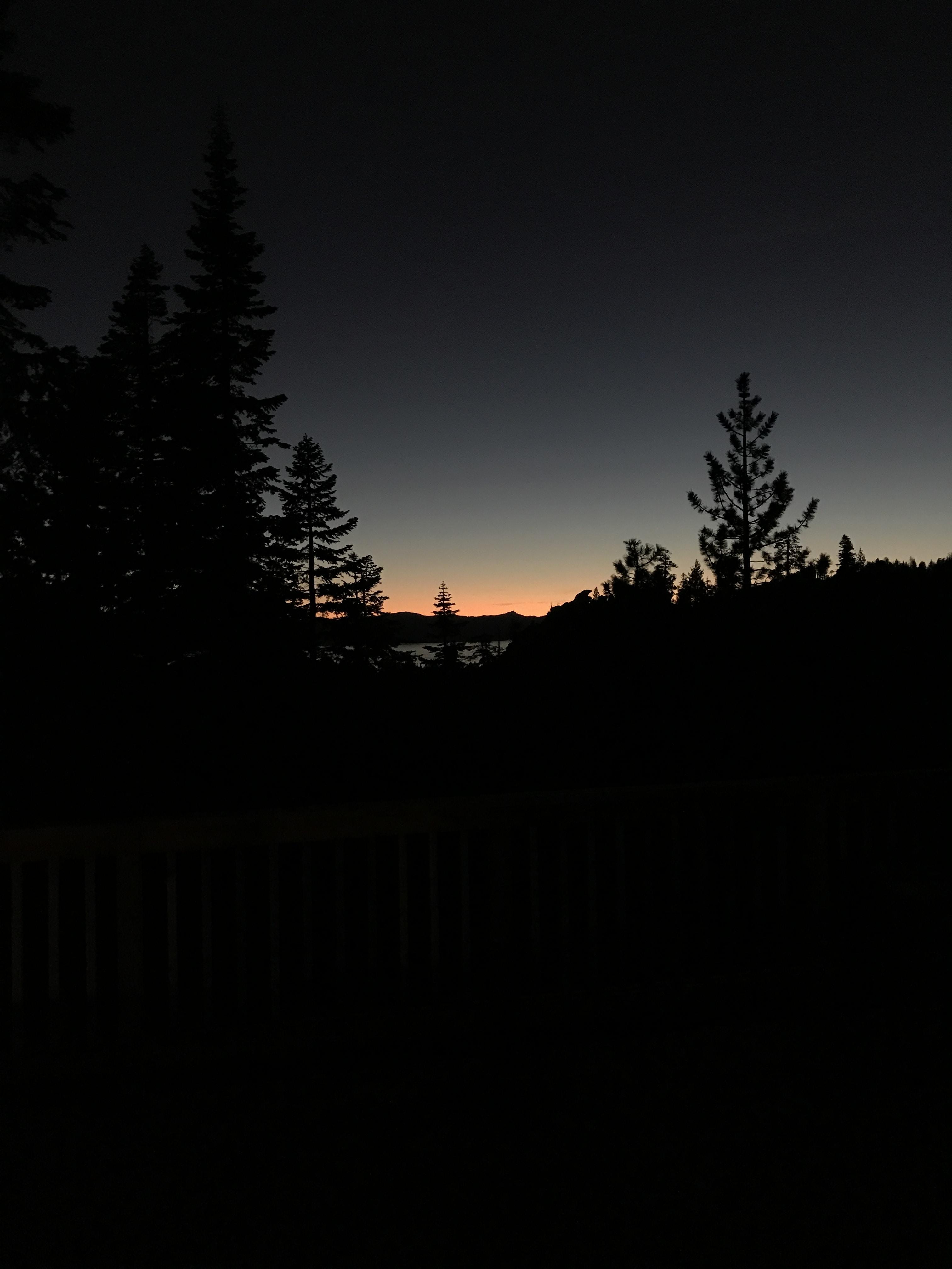 A silhouette of a treeline against a twilight sky