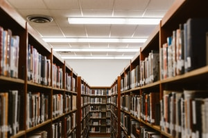shallow focus photography of bookshelfs
