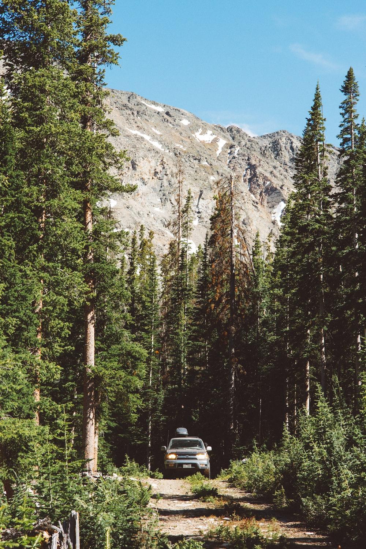 black vehicle near mountain