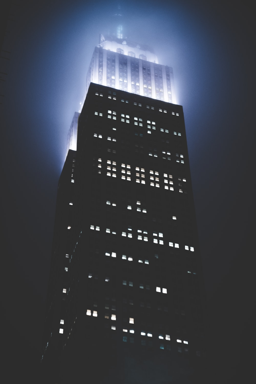 architectural photography of black building