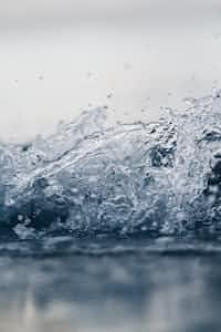 Water Bottle's first post! waterbottle stories