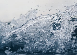 shallow focus photography of water