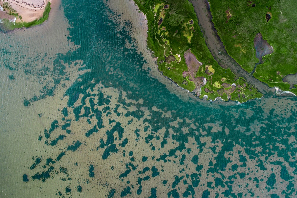 aerial view of grass field beside body of water