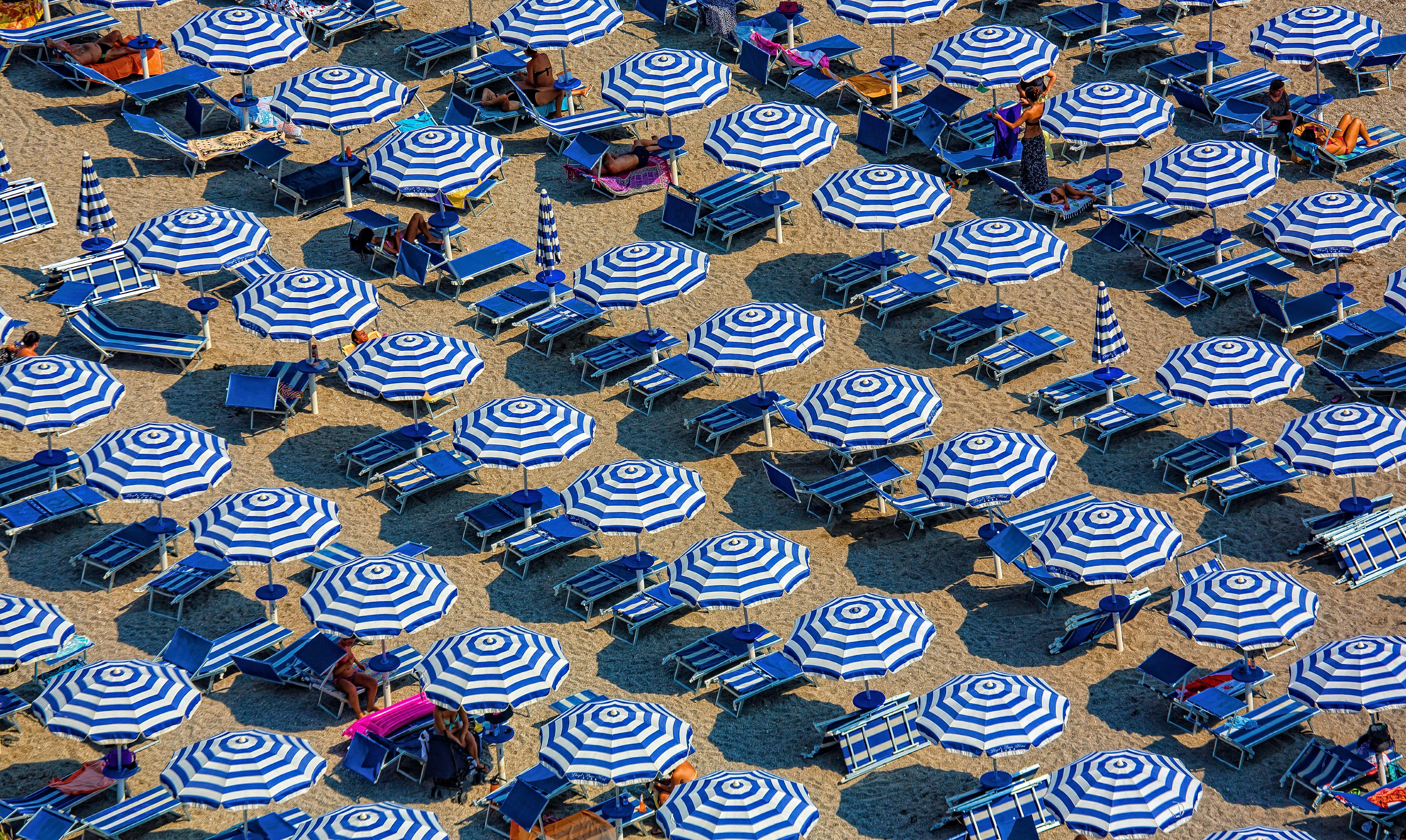 A high-angle shot of rows of white and blue umbrellas over blue deck chairs lining a sandy beach
