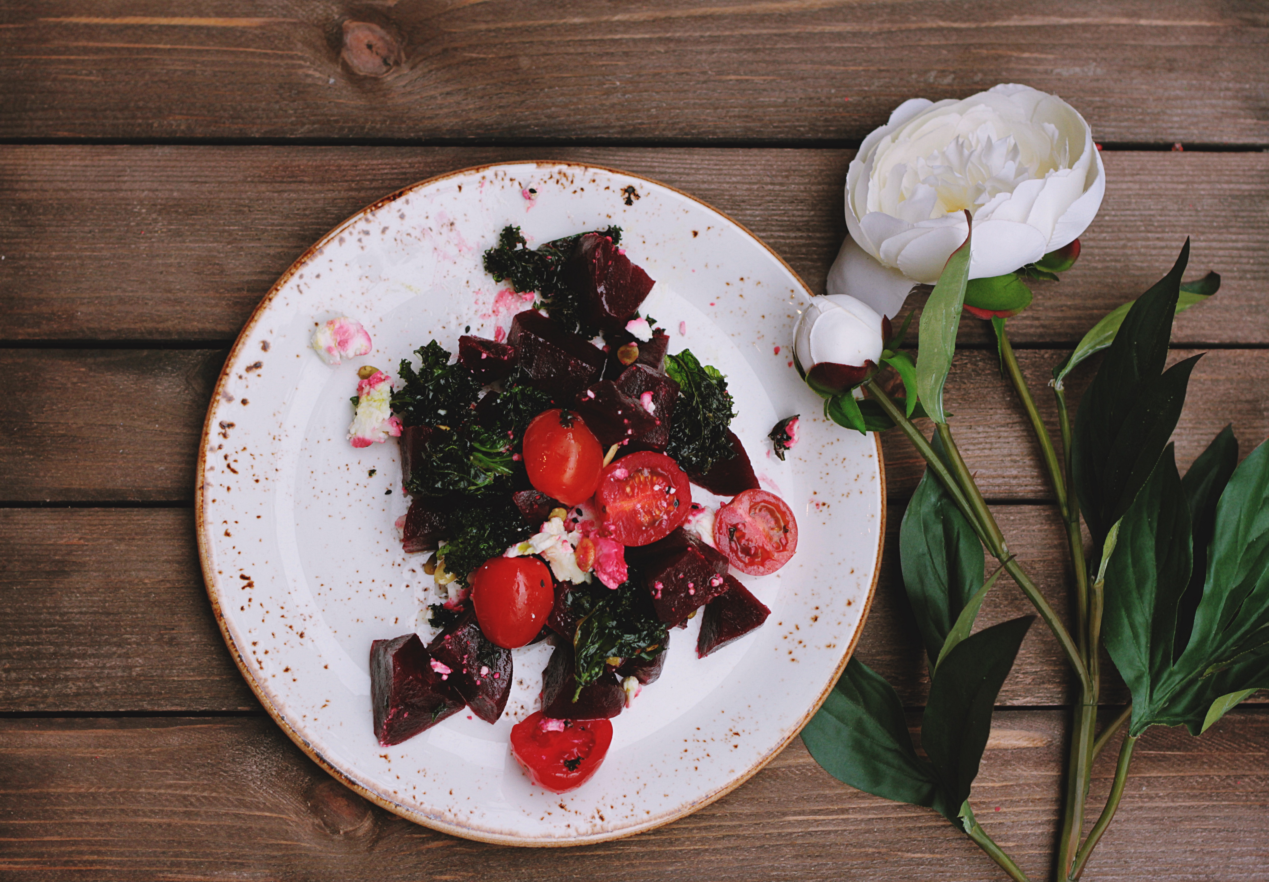 Succulent, flower, purple and art - HD photo by Tina Floersch (@tfloersch) on Unsplash - 웹