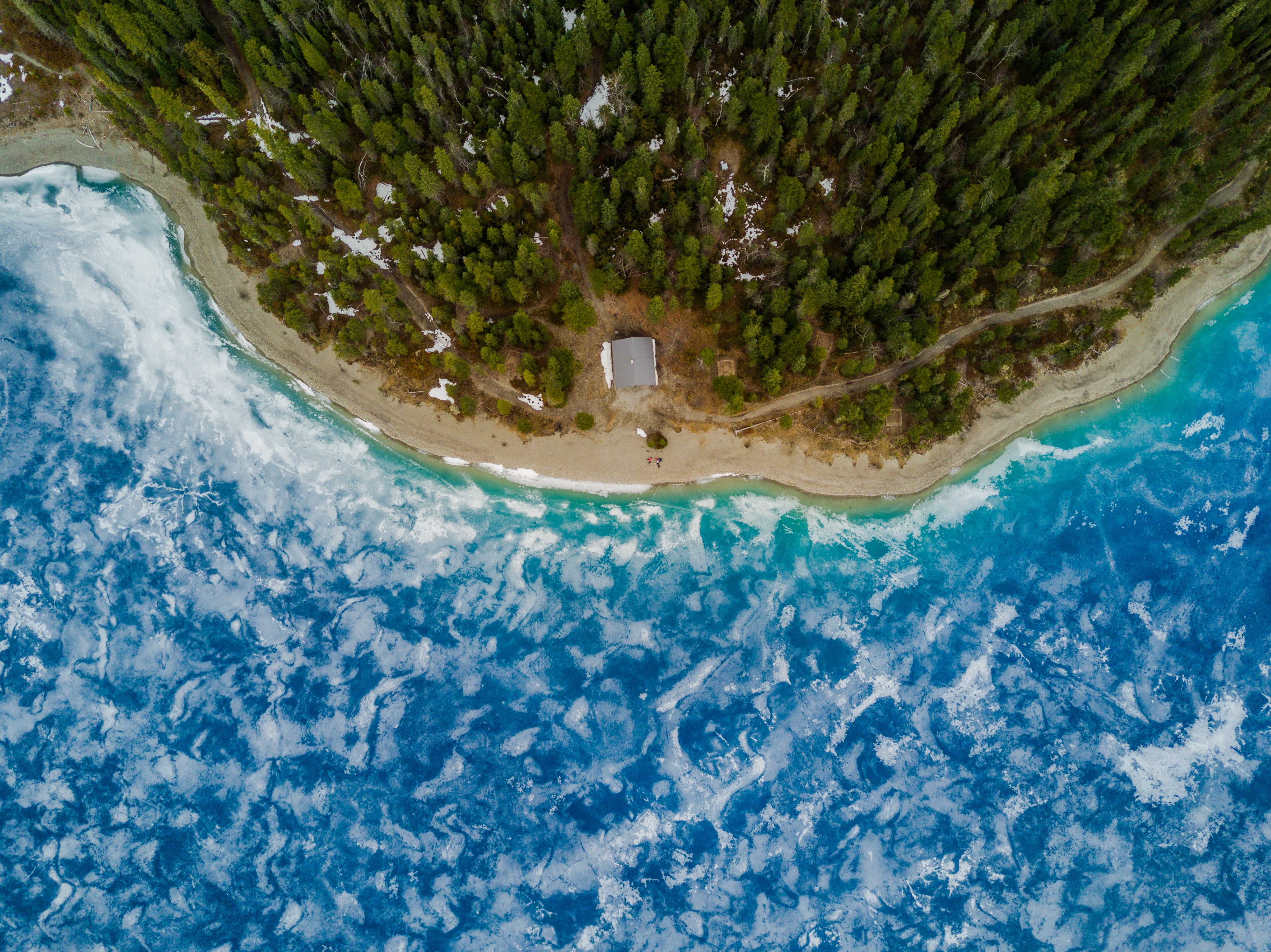 A drone shot of a sandy beach and a forest near a blue lake