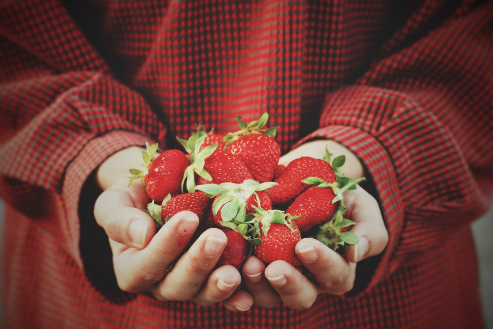 person holding strawberries