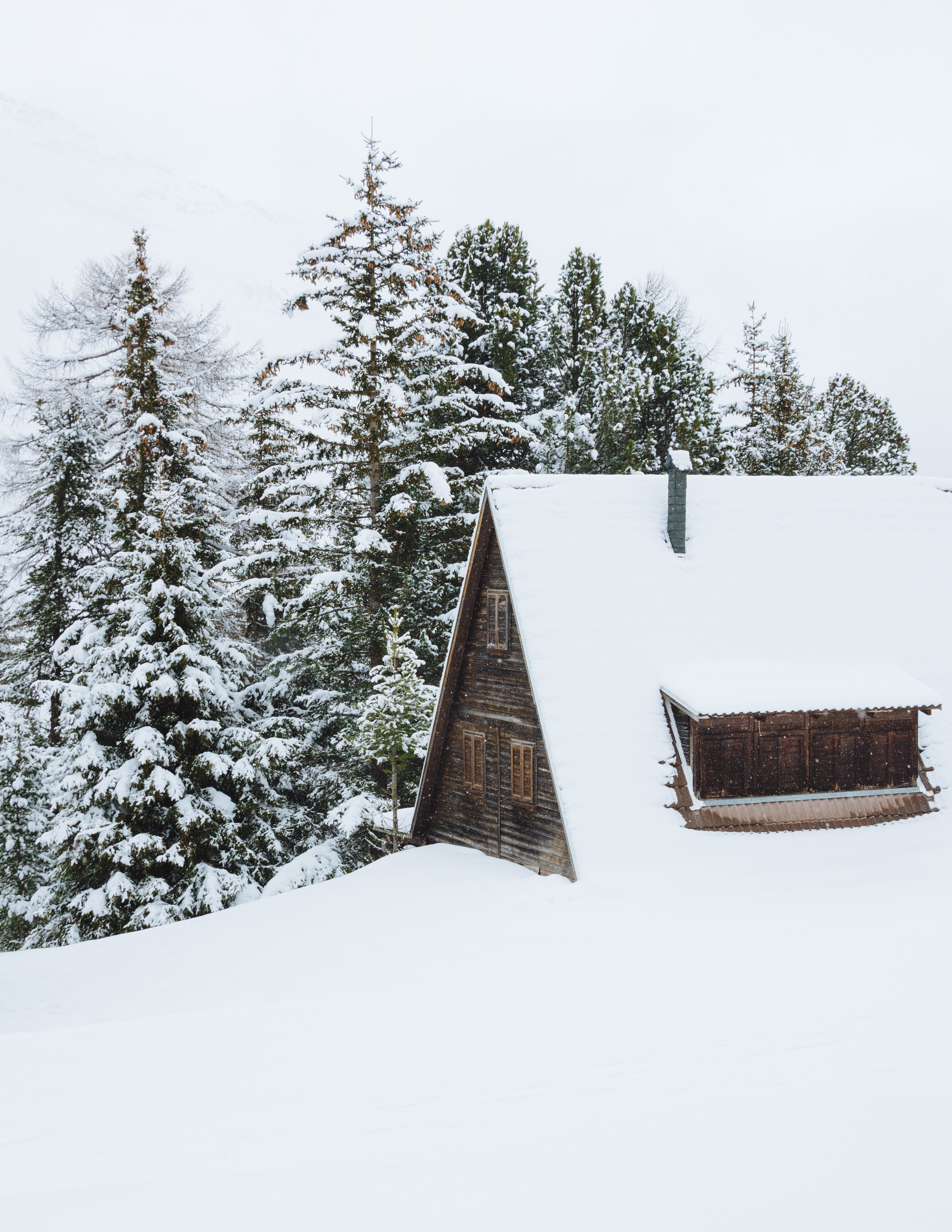 brown cabin covered of snow beside trees at daytime