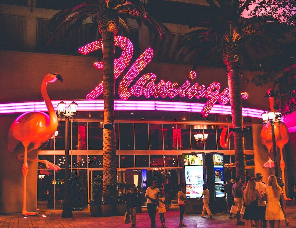 Flamingo signage