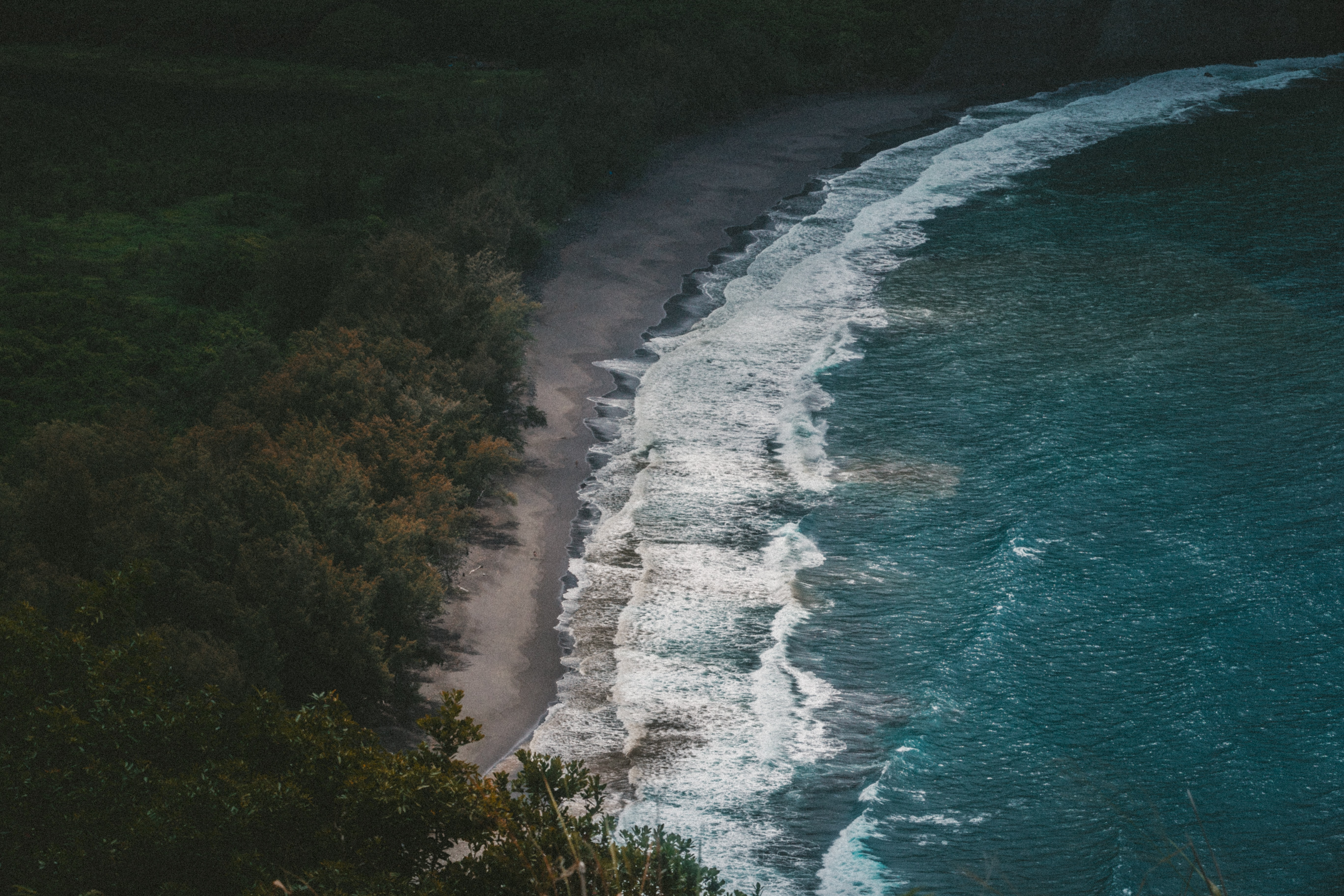 Drone view of the waves washing on the sand beach by the forest