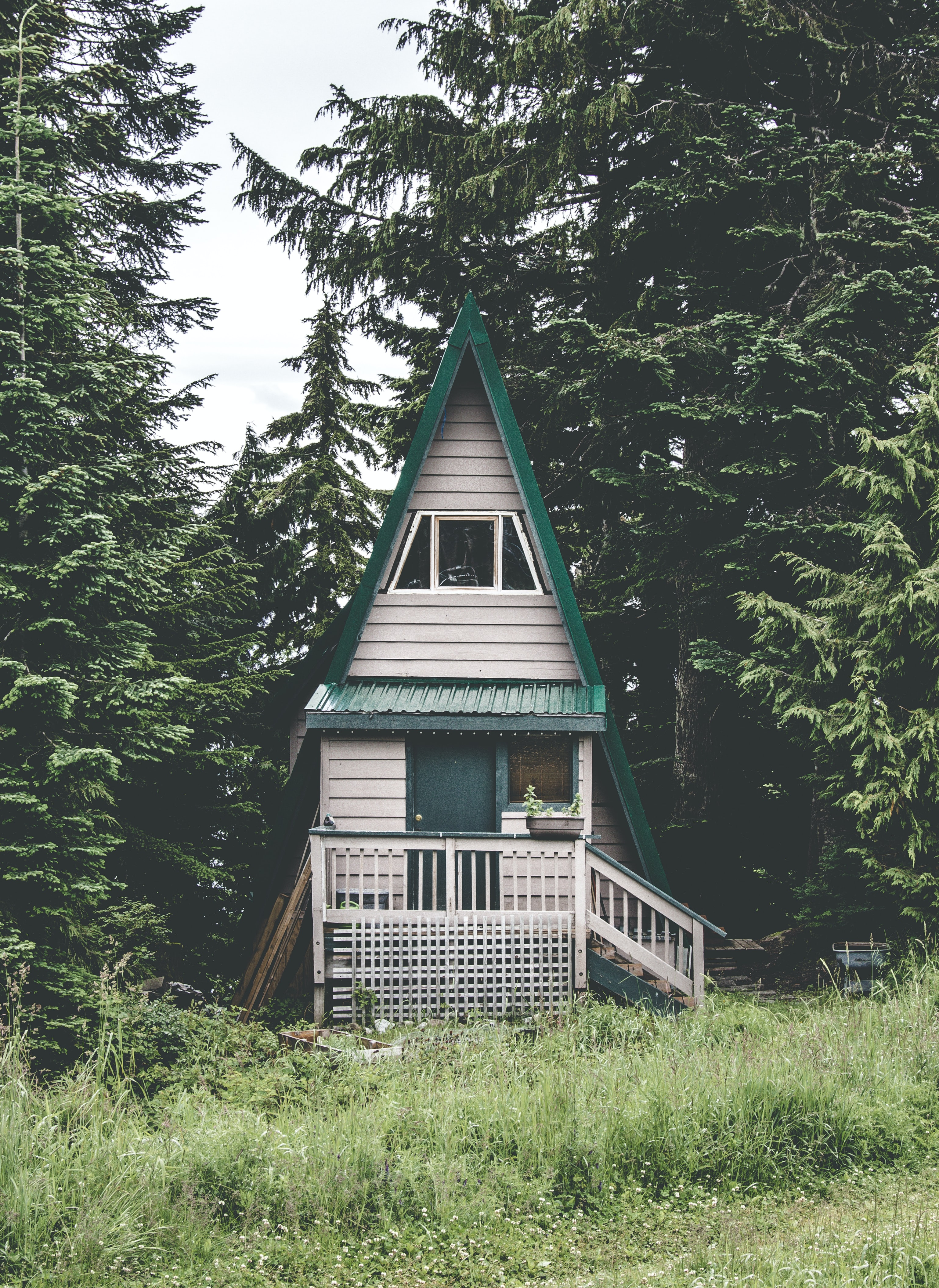 closeup photography of white and green bungalow house surrounded by trees