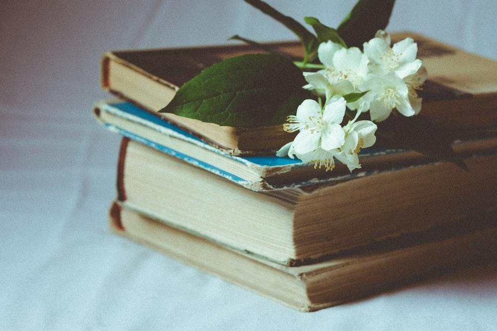 white flowers on books