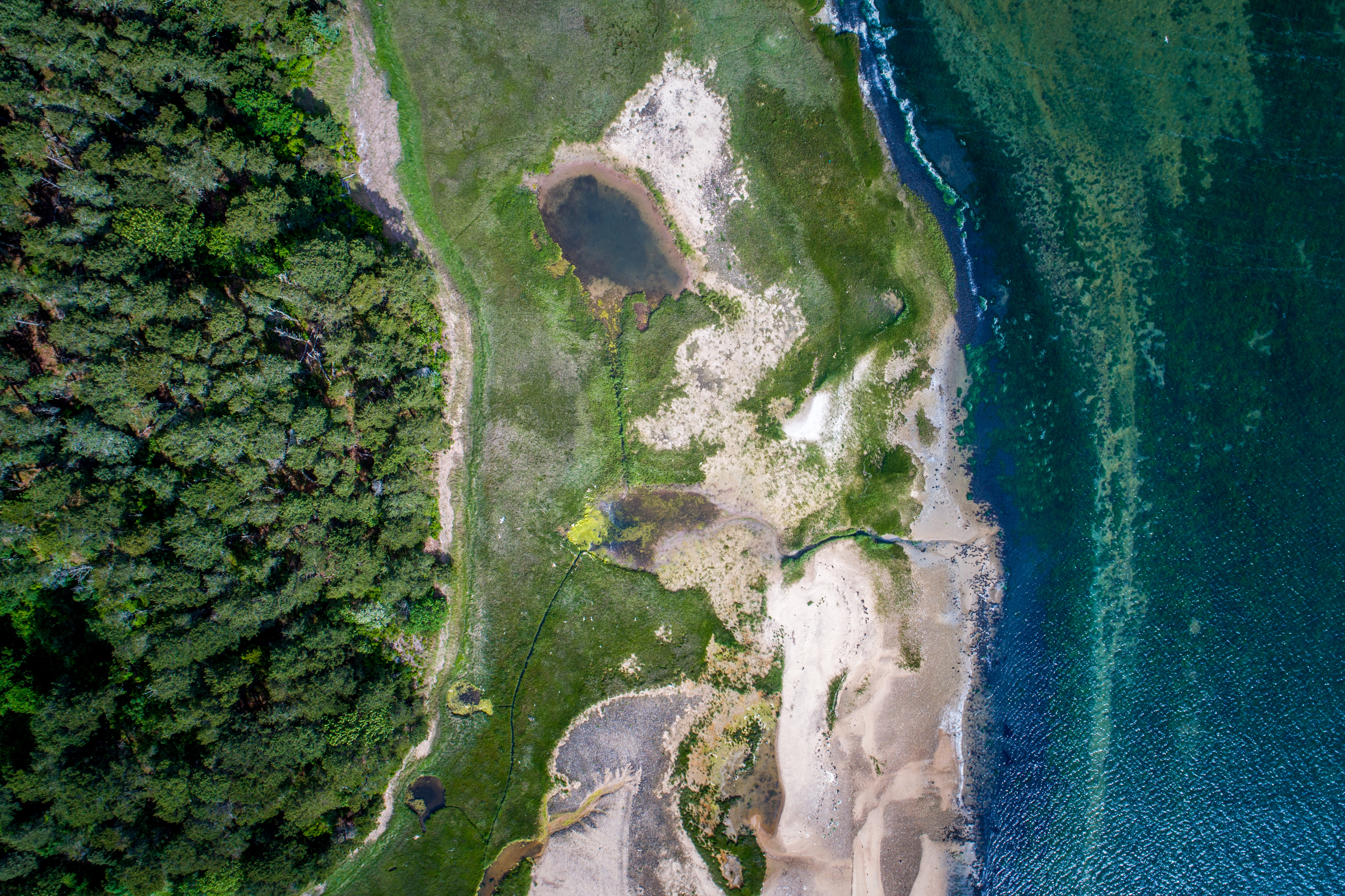 aerial photography of land form and sea
