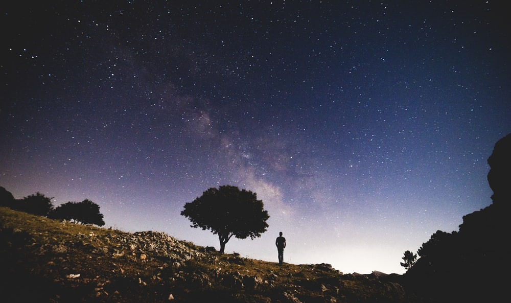 silhouette photo of person standing near trees under white stars