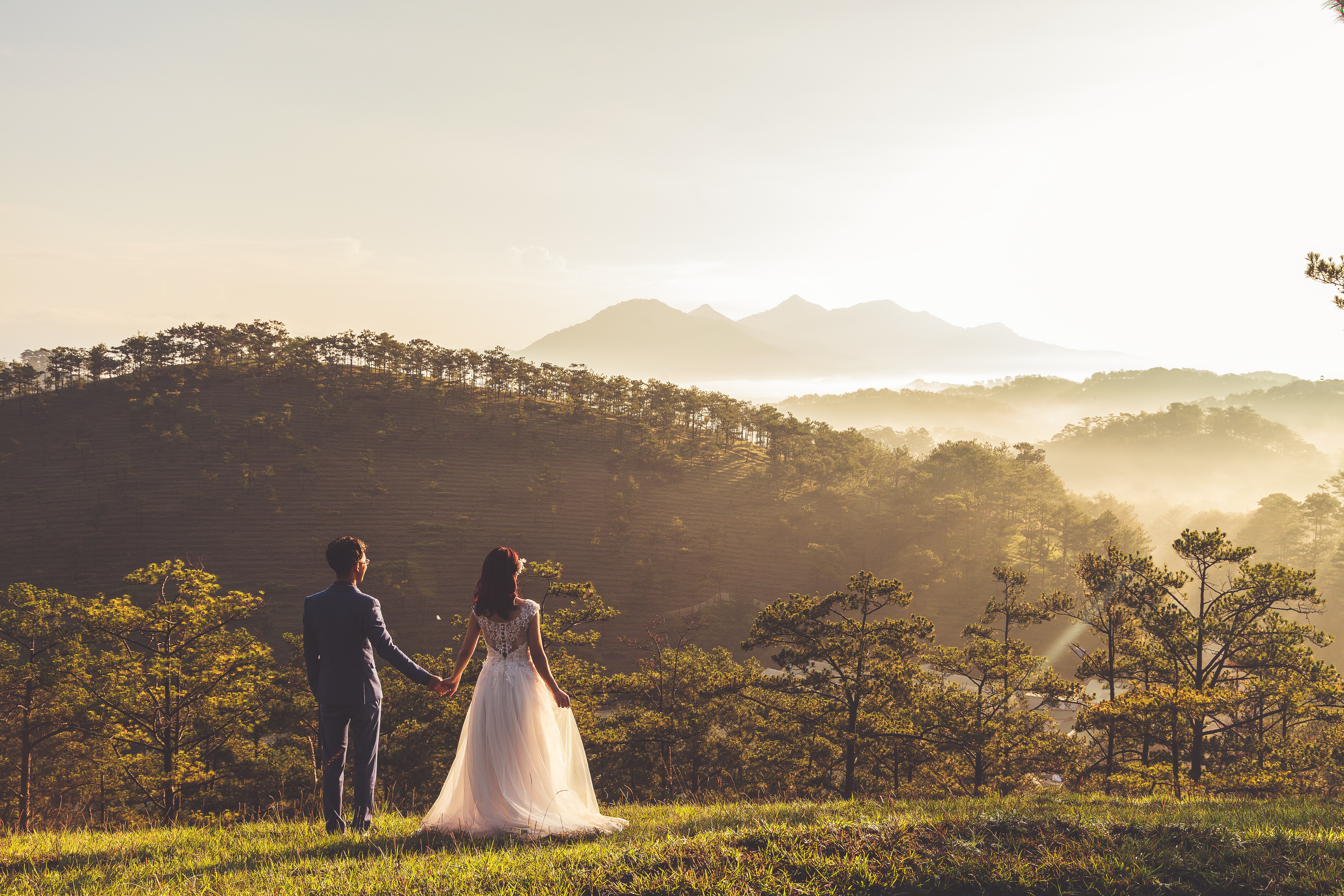 A married couple holds hands looking into the distance in a grassy wooded area in the Dalat hills