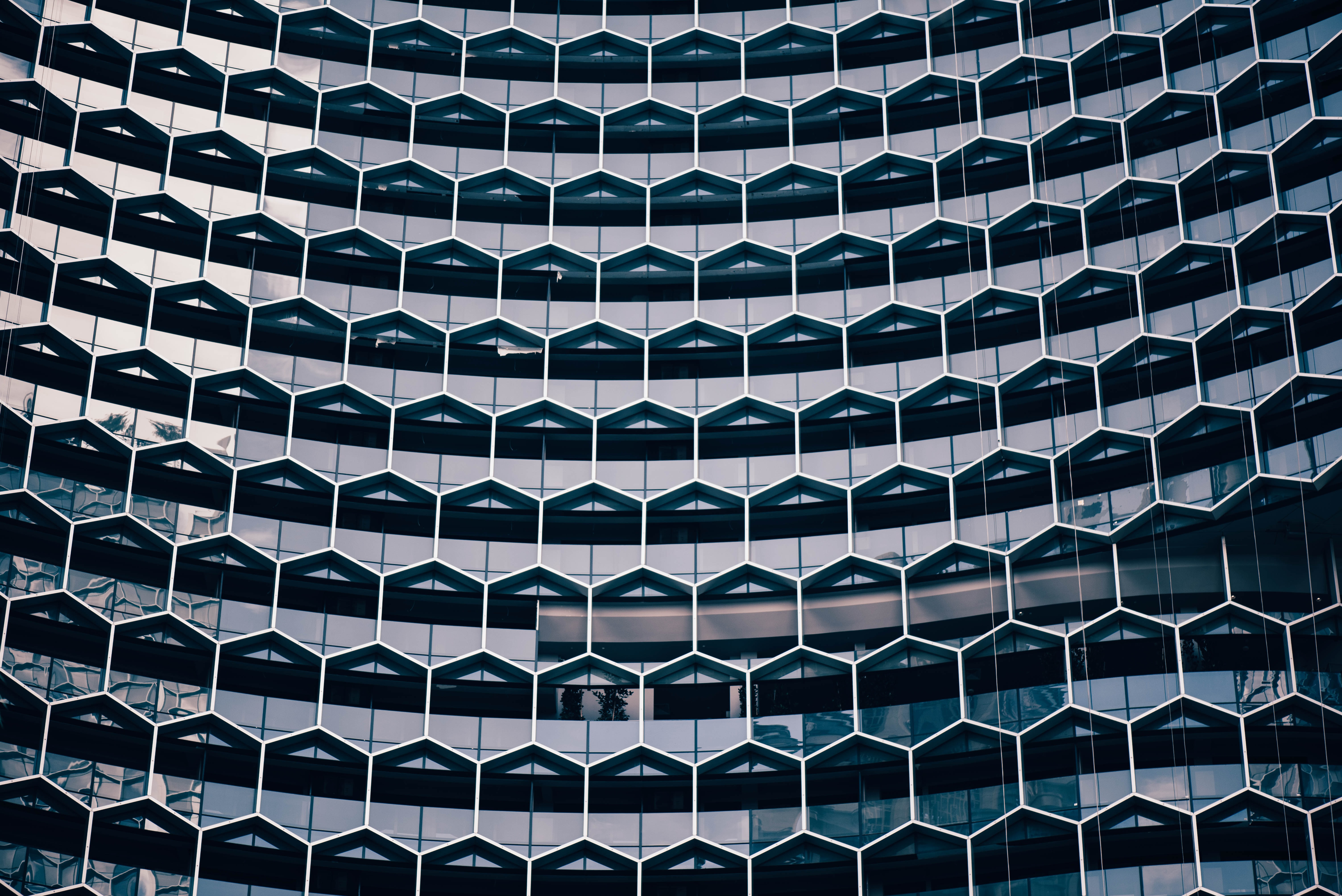 A honeycomb pattern in the facade of a modern office building