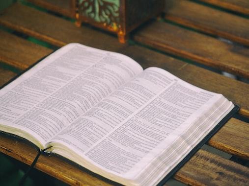 Cover Image for Exégesis bíblica y homosexualidad