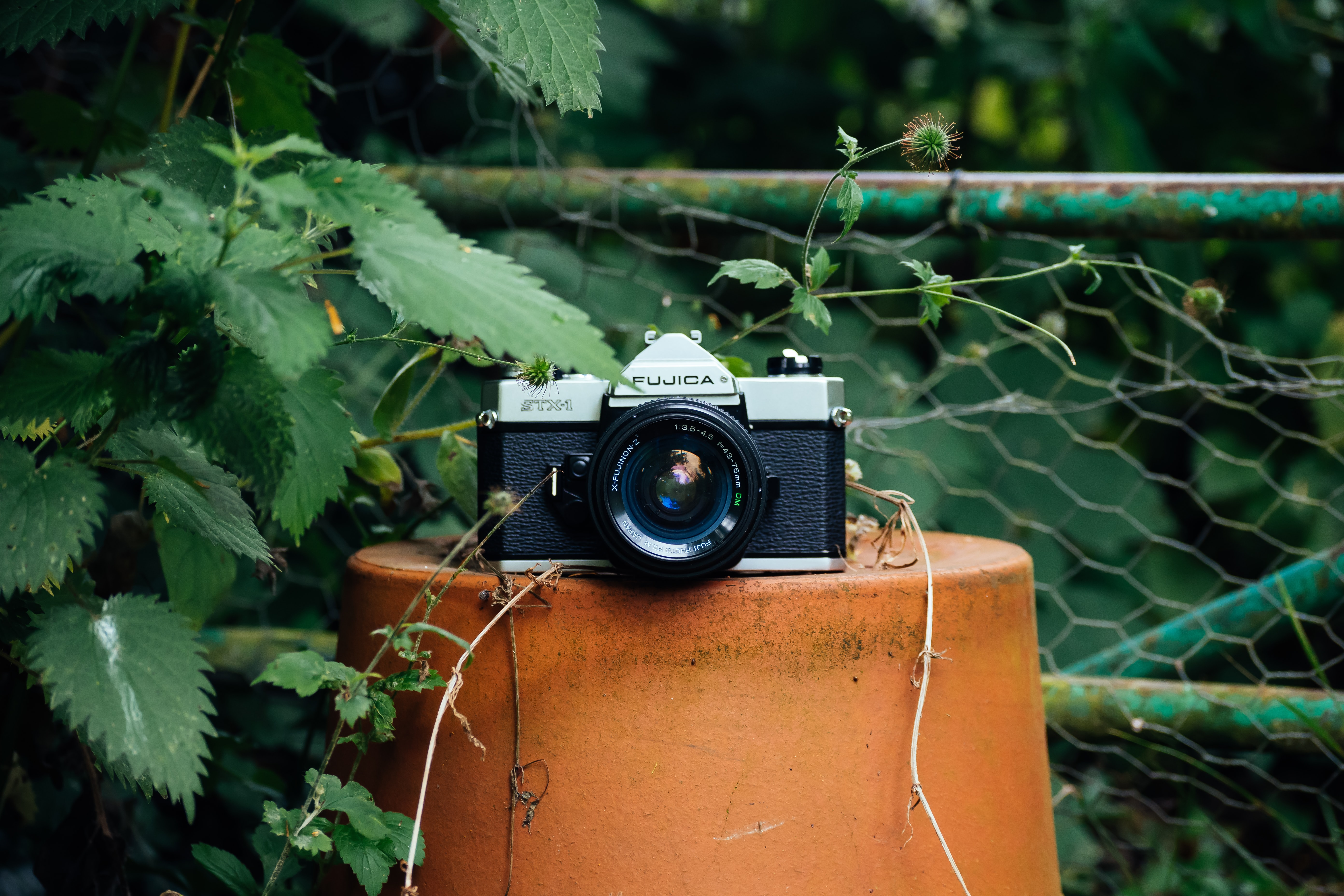 black and gray camera on flowerpot