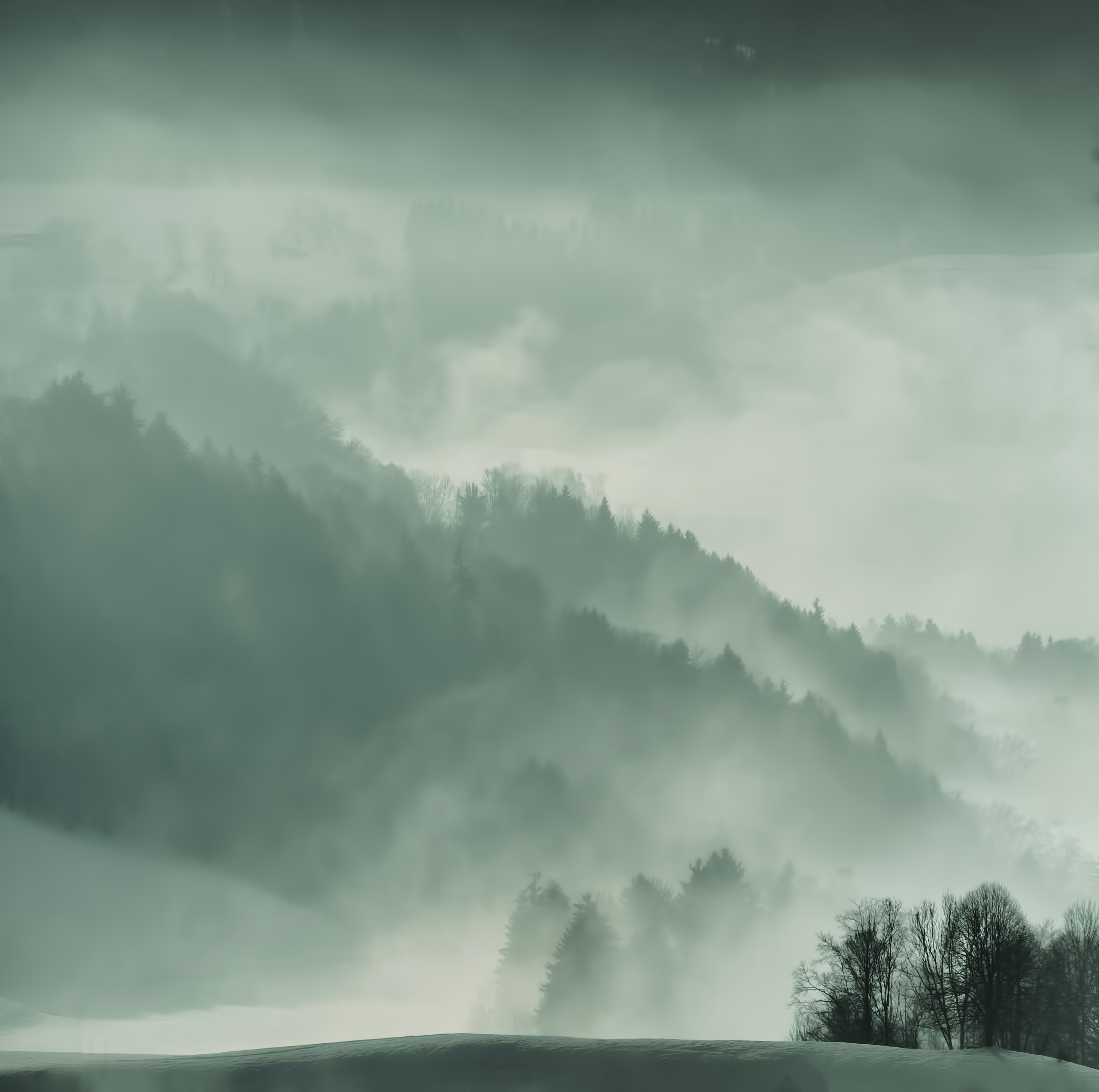 A thick mist obscuring forested hills