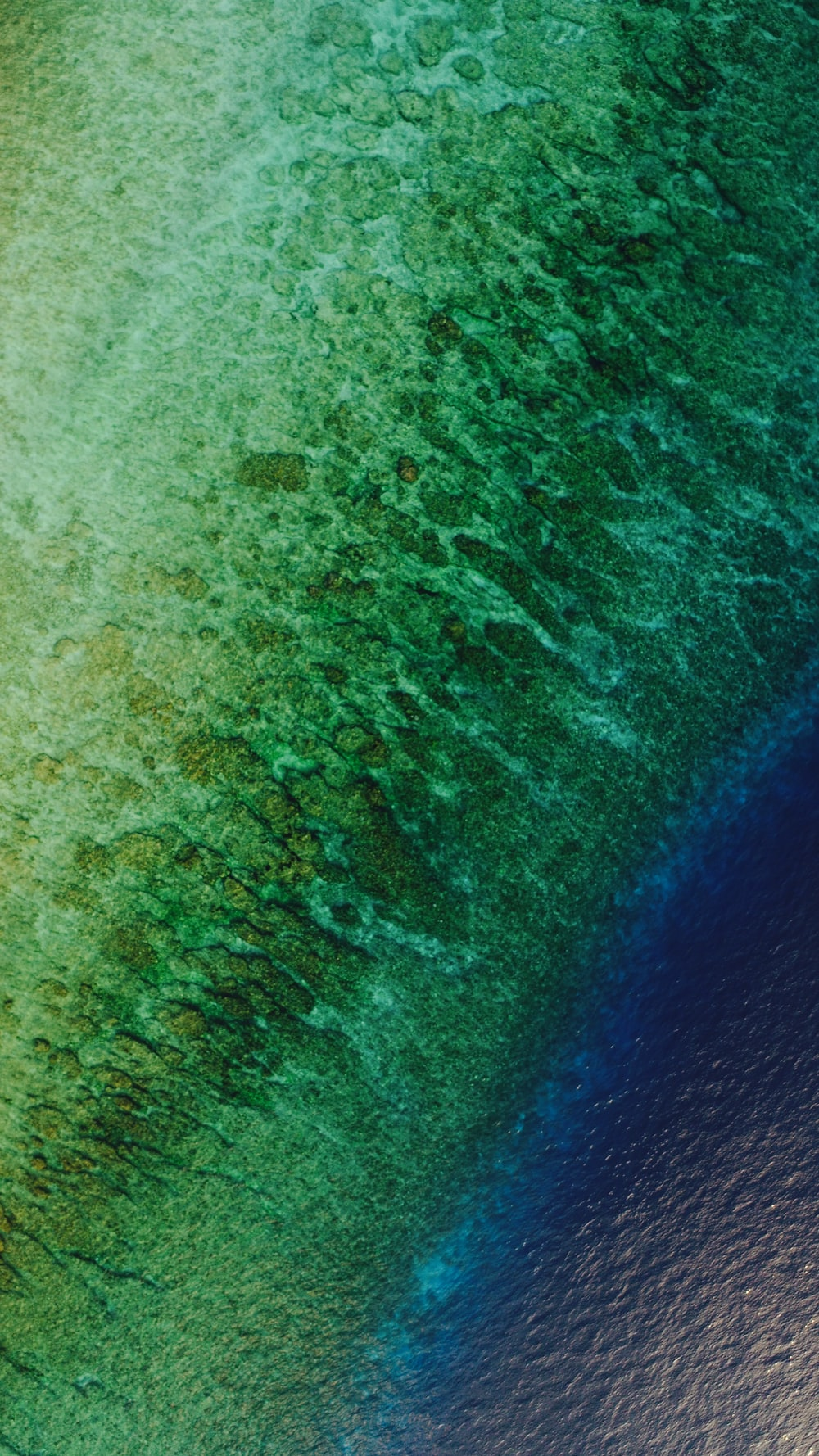 green and blue sea aerial photo