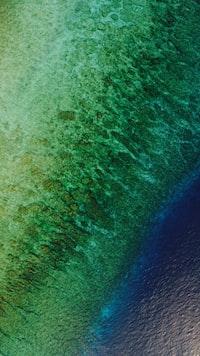 Aerial view of a Maldivian beach.