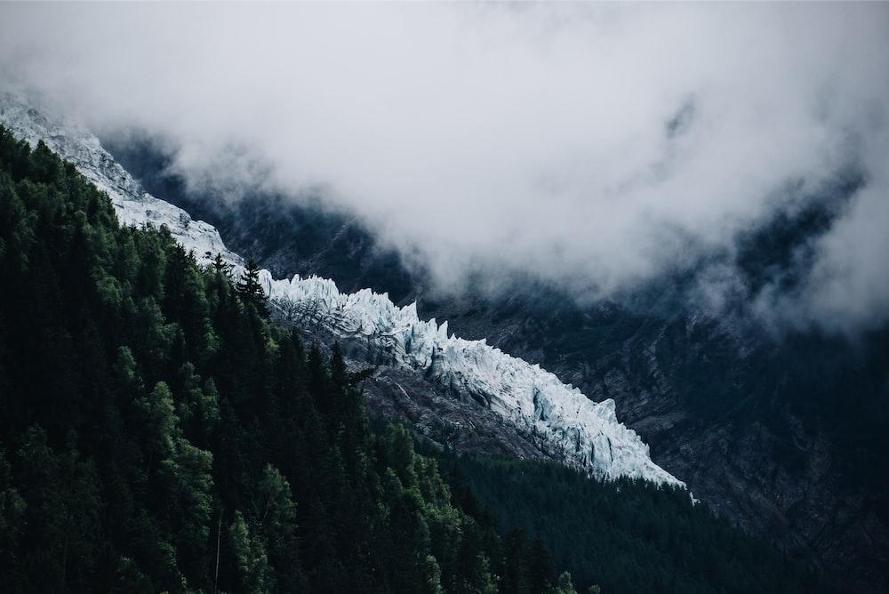 photo of mountain near green tree at daytime