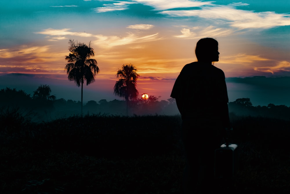 silhouette photography of person standing far from trees during golden hour