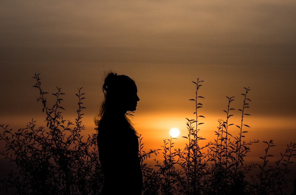 silhouette of person standing near plants