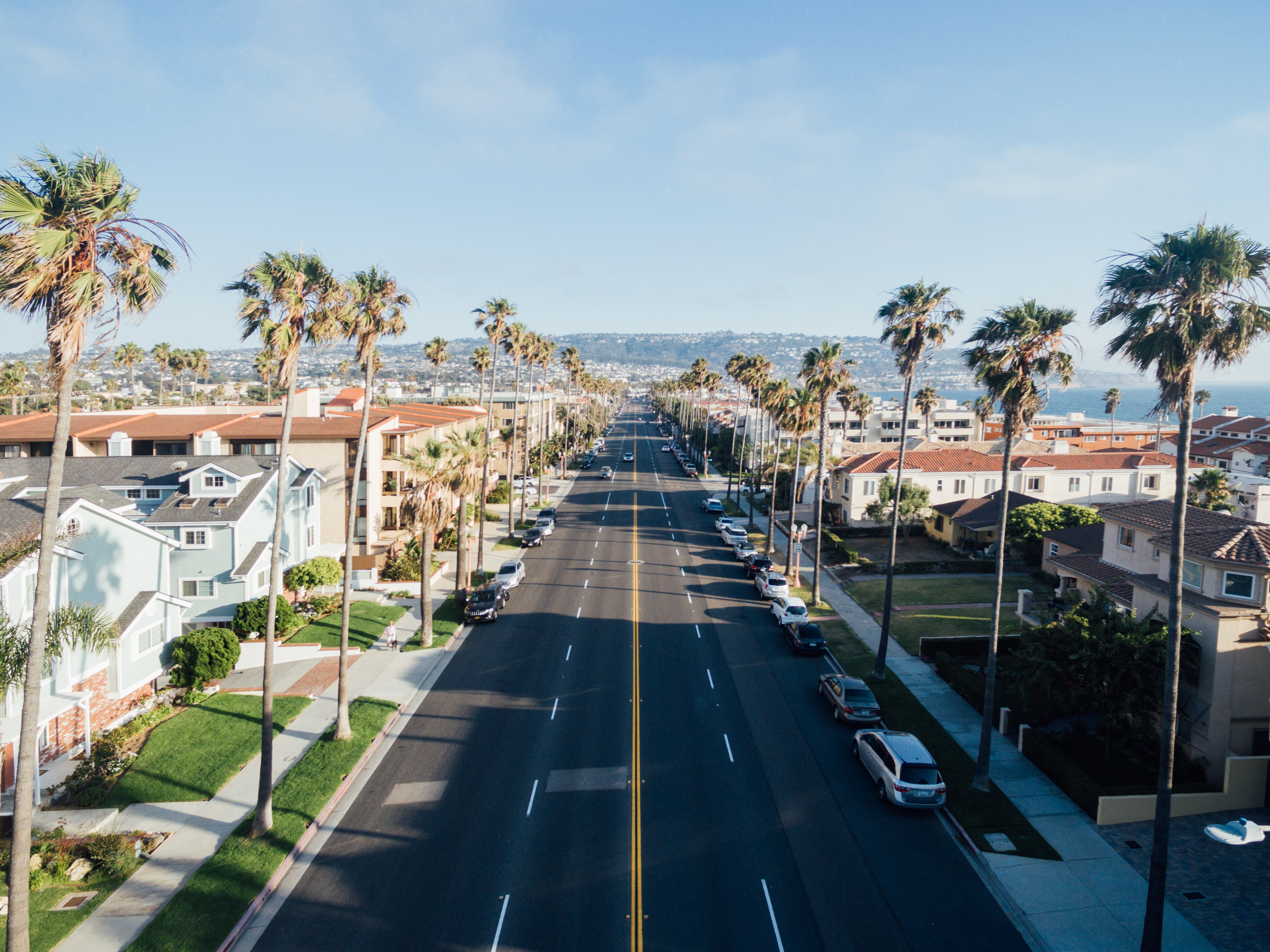 Drone view of palm tree avenue at South Redondo, Redondo Beach, California, United States